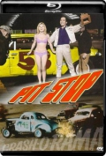 Pit Stop (1969) 1080p Poster