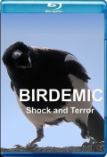 Birdemic Shock and Terror (2010) Poster