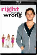The Right Kind of Wrong (2013) 1080p Poster