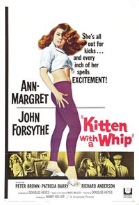 Kitten with a Whip (1964) 1080p Poster