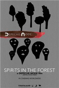 Spirits in the Forest (2019) 1080p Poster