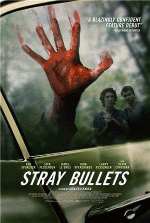 Stray Bullets (2017) Poster
