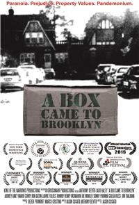 A Box Came to Brooklyn (2020) 1080p Poster
