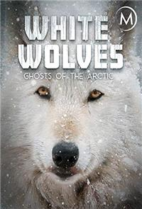 White Wolves: Ghosts of the Arctic (2017) 1080p Poster