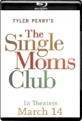 The Single Moms Club (2014) 1080p Poster