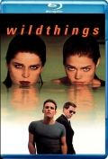 Wild Things (1998) Poster