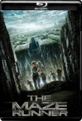 The Maze Runner (2014) 1080p Poster