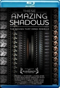 These Amazing Shadows (2011) Poster