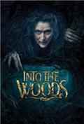 Into the Woods (2014) 1080P Poster