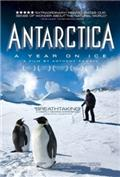 Antarctica: A Year on Ice (2013) 1080P Poster