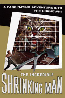 Download YIFY Movies The Incredible Shrinking Man (1957 ...