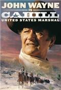 Cahill U.S. Marshal (1973) Poster