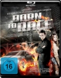Born to Race (2011) 1080p Poster