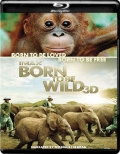 Born to Be Wild (2011) 1080p Poster