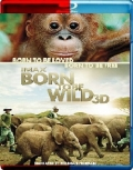 Born to Be Wild (2011) 3D Poster