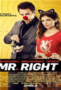 Mr. Right (2016) 1080p Poster