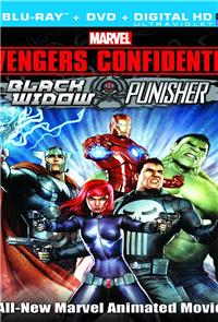 Avengers Confidential: Black Widow & Punisher (2013) 1080p Poster