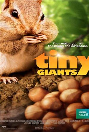 Tiny Giants 3D (2014) Poster