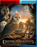 Legend of the Guardians (2010) 3D Poster