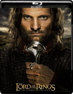 The Lord of the Rings: The Return of the King EXTENDED (2003) 1080p Poster