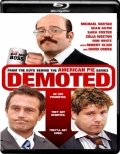 Demoted (2011) 1080p Poster