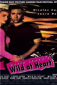 Wild At Heart (1990) 1080p Poster
