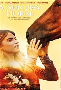 A Sunday Horse (2015) 1080p Poster