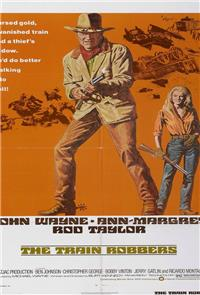 The Train Robbers (1973) 1080p Poster