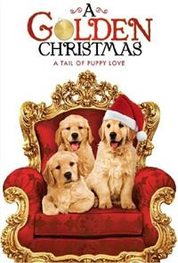 A Golden Christmas (2009) Poster