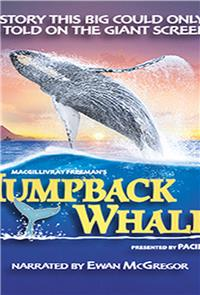 Humpback Whales (2015) Poster