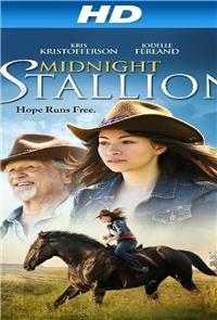 Midnight Stallion (2013) Poster
