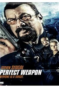 The Perfect Weapon (2016) 1080p Poster