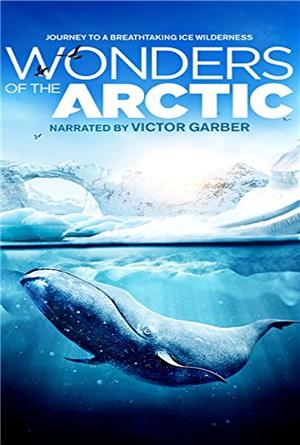 Wonders Of The Arctic 3D (2014) 1080p Poster