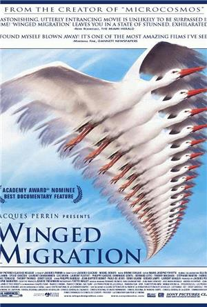 Winged Migration (2001) 1080p Poster