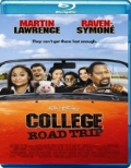 College Road Trip (2008) Poster