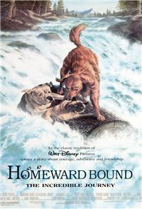 Homeward Bound: The Incredible Journey (1993) Poster