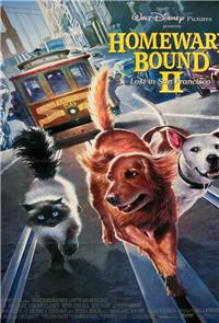 Homeward Bound II: Lost in San Francisco (1996) Poster