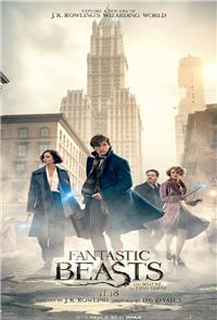 Fantastic Beasts and Where to Find Them (2016) 3D Poster