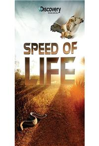 Speed of Life (2010) 1080p Poster