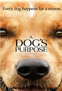 A Dog's Purpose (2017) 1080p Poster