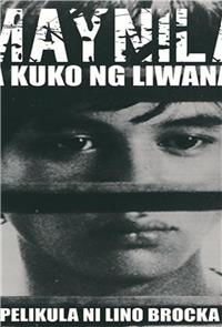 Manila in the Claws of Light (1975) Poster
