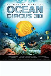 Ocean Circus 3D - Underwater Around the World (2012) 1080p Poster