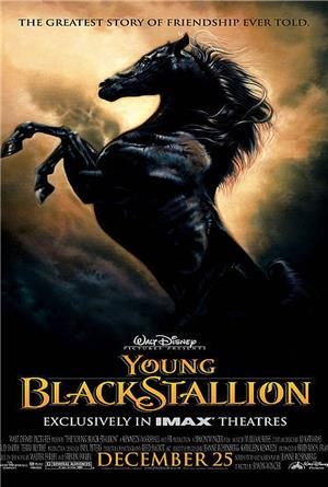 Young Black Stallion (2003) Poster