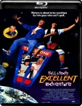 Bill & Ted's Excellent Adventure (1989) 1080p Poster
