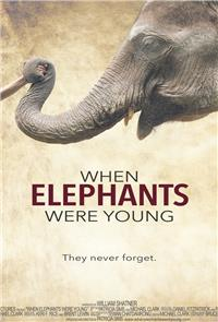 When Elephants Were Young (2016) Poster