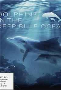 Dolphins in the Deep Blue Ocean (2009) 1080p Poster