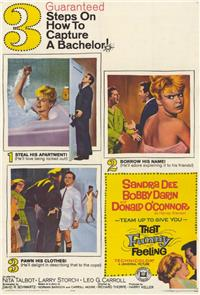 That Funny Feeling (1965) Poster