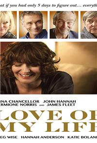 Love of My Life (2017) 1080p Poster