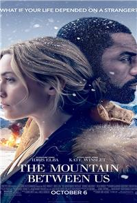 The Mountain Between Us (2017) 1080p Poster