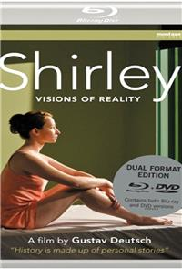 Shirley: Visions of Reality (2013) Poster